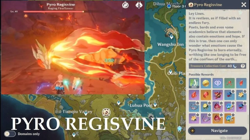 Genshin Impact: Let's Find The Elite Boss Of The Game - Pyro Regisvine